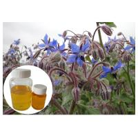 Quality Omega 6 Cosmetic Plant Extract , Borage Oil Supplement For Skin Disorder wholesale