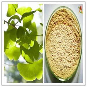 China Natural Regulate Blood Lipid Ginkgo Biloba Extract 24% Flavones 6% Lactones on sale