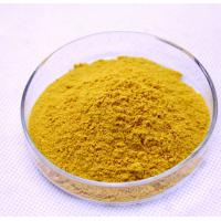 China 100% Natural Fenugreek Seed Extract 4-Hydroxyisoleucine 20% powder on sale