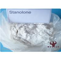 Quality Synthetic Anabolic Steroid Powder , Androstanolone Powder For Muscle Buliding CAS 521-18-6 wholesale