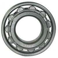 Quality 100mm Bore Cylindrical Roller Bearing NU 420 / NU 420 M Single Row 250mm wholesale