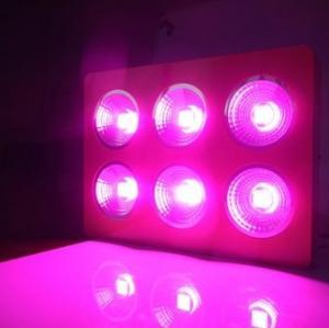 Quality High Luminous LED Plant Grow Light 450W wholesale