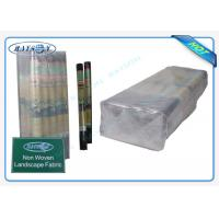 Quality 100% PP Raw Non Woven Weed Barrier Landscape Fabric Protect Plant / Garden / Fruit / Weed Control wholesale