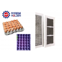 Quality 30 Cells Egg Tray Injection Plastic Molded Pulp Trays wholesale