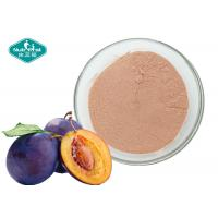 Quality Plum Fruit And Vegetable Powder Light Red Brown Safety Good Taste For Soft Beverage wholesale