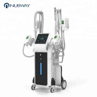 China OEM & ODM salon use permanent cellulite cold body sculpting cryolipolysis fat freezing machine home device on sale