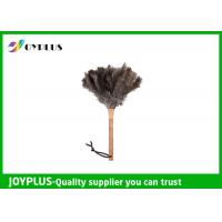 Quality Professional Home Cleaning Tool Ostrich Feather Duster Bamboo Handle wholesale