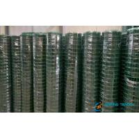 Cheap PVC Coated Welded Wire Mesh With Plastic Protection Layer Fit for Outside for sale