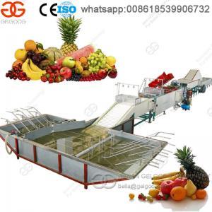 Hot Selling High Capacity Fruit Washing and Waxing Machine