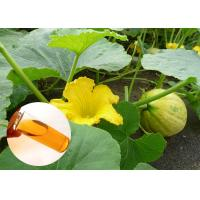 Quality Food Grade Natural Plant Extract Oil Cold Pressed Pumpkin Oil Prostate Protection wholesale