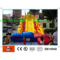 Quality Inflatable Slide Inflatable Dry Slides For Adults , Bouncy House With Water Slide wholesale