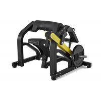 Quality Biceps Curl Hammer Strength Gym Equipment Long Service Life Rust Resistant wholesale