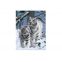 Quality Vivid Tiger Image 3d Lenticular Image For Home 0.76mm Thickness 3d Animal Pictures wholesale