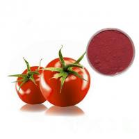 Cheap Professional Tomato Extract Powder Lycopene Powder 5% 10% 20% Delay Aging for sale