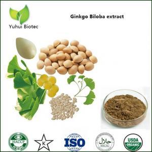 China ginkgo biloba extract,flavonoids ginkgo biloba extracts,ginkgo biloba extract powder on sale