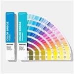 China Solid Coated / Uncoated Paper Paint Color Cards 2019 Pantone GP6102A Color Bridge Guide Set on sale