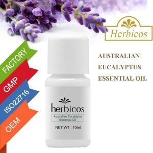 Quality MSDS Australian Eucalyptus Pure Essential Oils 10ml Sandalwood wholesale