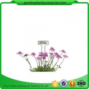 Quality Blue Ribbon Garden Plant Markers / Metal Plant Markers For Garden Pcs/Bag 4 Packing size 22*22*14  Pcs/CTN 30 wholesale