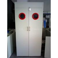 Quality Steel Laboratory Gas Cylinder Storage Cabinet 600/900/1200 Width With Vent System wholesale