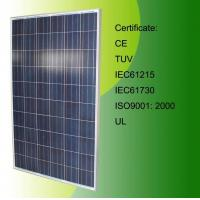Quality High Efficiency Poly Solar Panel 240W (CLSPM-240W) wholesale