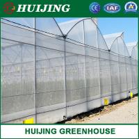 Cheap Large Multi-Span PE Film Tropical Greenhouse Agriculture and Commercial Used Greenhouse for sale