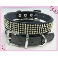 China Dog Collar And Leash Pet Leashes on sale