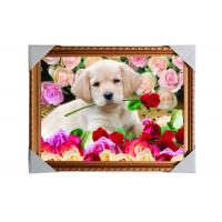 Quality Customised PET Pictures 3D Lenticular Printing Service Stock 3D Image PS Frame wholesale