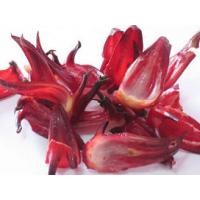 Quality Roselle Extract Anthocyanins5%,25% UV  promote blood cell destruction wholesale