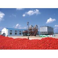 Quality Fruit Jam / Tomato Paste Production Line Package Type Bags / Bottles / Cans wholesale