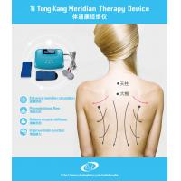 Quality Meridian Healthcare Digital Therapy Machine , Bio Electric Stimulation Therapy wholesale