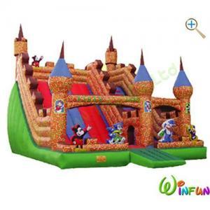 Quality Inflatable slide WF-A050 wholesale