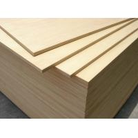 Buy cheap Vietnam Made White Birch Plywood , 1220*2440mm, Acacia/Hardwood Core, from wholesalers