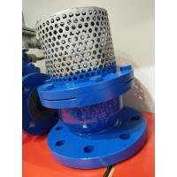 Quality PN16 Cast Iron Flanged Foot Valve With Stainless Steel Screen wholesale