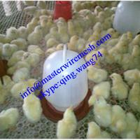 Cheap Plastic Plain Wire Mesh for Chicken and Duck Breeding for sale