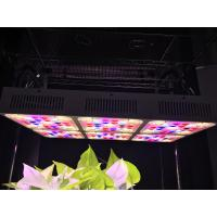 Quality Aluminum 570W Full Spectrum LED Grow Lights CREE COB With CE RoHS Approval wholesale