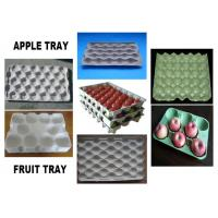 Quality Aluminum Apple Egg Tray Mold Pulping Molding Silvery White Customized wholesale