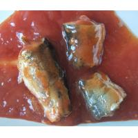 Quality Canned food Canned Fish Canned Sardine/ Tuna/ Mackerel in tomato sauce/oil/ brine 155G 425G wholesale