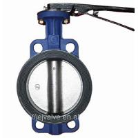 Ductile Iron Wafer Concentric DN100 Lug Butterfly Valve