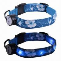 China LED Dog Collar and Leashes with Red/Orange/Yellow/Green/Blue/7 Colors, Meet International Standard on sale