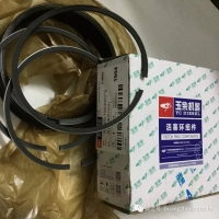 Quality Yuchai diesel engine parts    YCdiesel piston ring A6000-1004002*4 wholesale