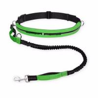 Quality wholesale durable 72x12 dog leash nylon safer pet leash with metal hook price wholesale
