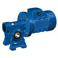 Quality High Speed Motovario NMRV 040 Worm Gear Reducer / Hollow Shaft Gearbox wholesale