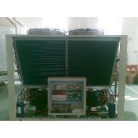 Quality CE Double Efficient Modular Chiller (DLME-75~2780(H)) wholesale