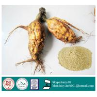 Quality GMP 100% Natural Radix Puerariae extract wholesale