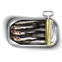 frozen sardines(head off and gutted off)