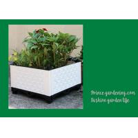 Quality Plastic Garden Square Planter Boxes , Outdoor White Rectangular Planter Box wholesale