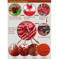 China Safe and Clean 5*5mm,6*6mm,9*9mm Hot Air Dried Red Chill Pepper on sale