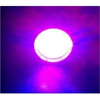 Cheap E27 Led Full Spectrum Grow Lights 120 W With Epistar Chip , 3 Years Warranty for sale