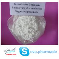 China Testosterone Decanoate Test Decanoate Anabolic Steroid Powder on sale
