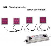 Quality DALI Dimming Indoor Plant Grow Lights HPS Equivalent For Vertical Farm wholesale